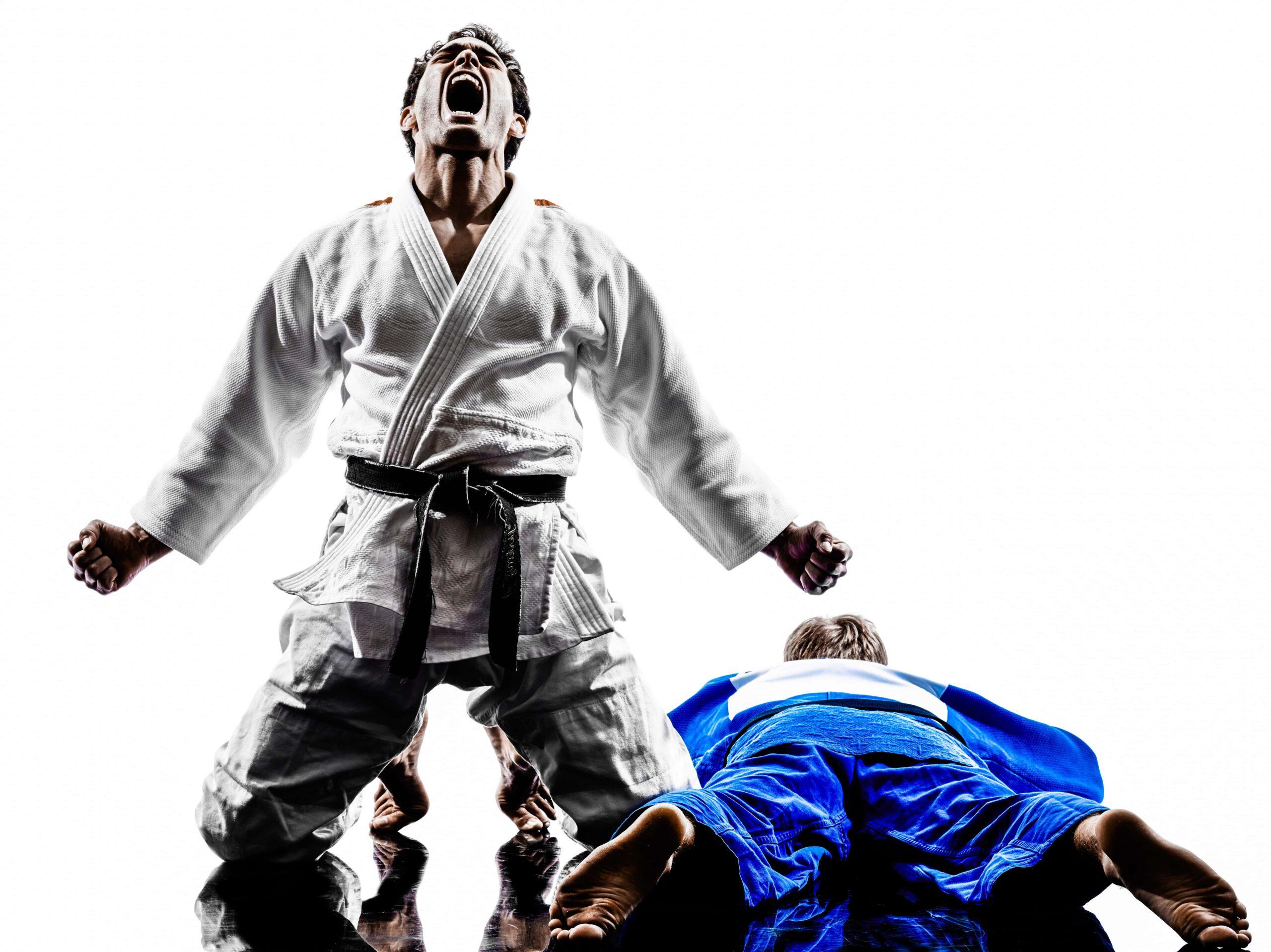 Martial arts jigsaw mats